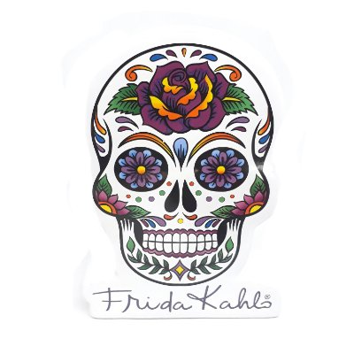 Cofre Caveira Frida Kahlo