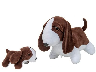 Cachorra Beagle Grávida