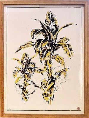 Serigrafia Bananeira