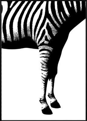 Quadro Zebra 2