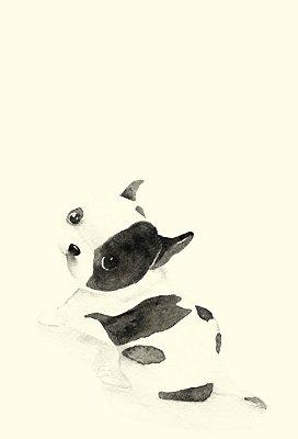 Poster Cão
