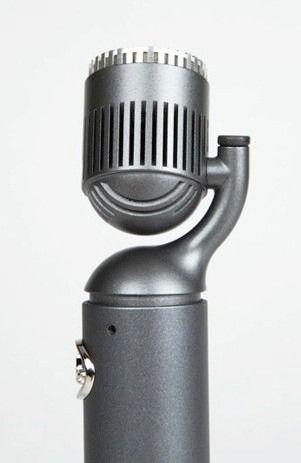 Blue Microphones Hummingbird Condenser Mic