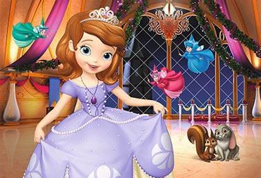 Decoração princesa sofia e as fadas painel infantil