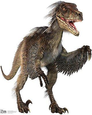 Totens - Displays - Dinossauros