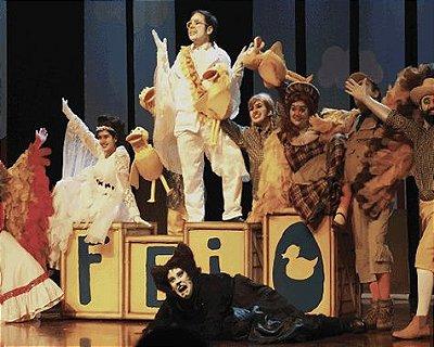 Teatro infantil: Feio - O Musical do Patinho (SÃO PAULO)