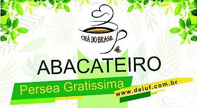 Abacateiro - Persea Gratissima -250 grs - Cha do Brasil