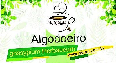 Algodoeiro - Gossypium Herbaceum - 250 grs - Cha do Brasil