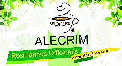 Alecrim - Rosmarinus Officinalis - 250 grs - Cha do Brasil