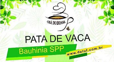 Pata de Vaca - Bauhinia spp - 250 grs- Cha do Brasil
