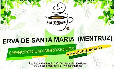 Erva de Sta Maria Mentruz - Chenopodium - 250 grs- Cha do Brasil