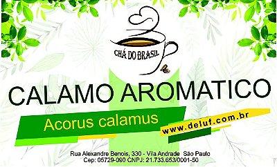 Calamo Aromatico - Acorus Calamus - 250 grs - Cha do Brasil