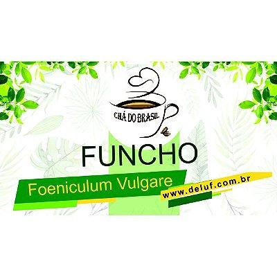 Funcho - Foeniculum Vulgare - 1 KG - Cha do Brasil