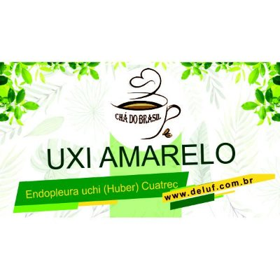 Uxi Amarelo - Endopleura Uxi 250 grs - Cha do Brasil