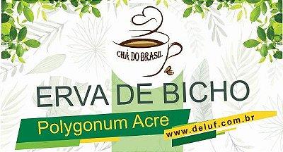 Erva de Bicho- Polygonum Acre- 250 grs- Cha do Brasil