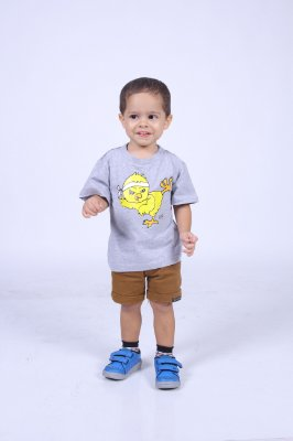 Camiseta Infantil Cinza Pintinho