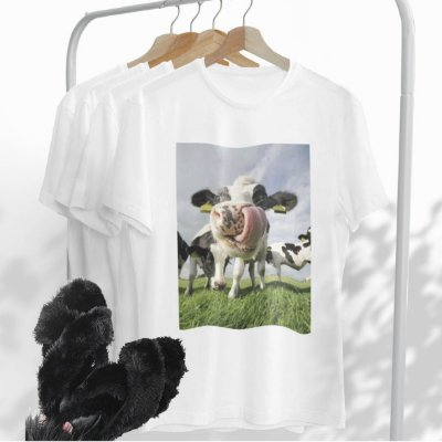 Combo Vaca: Uma T-shirt Branca + Chinelo peluciado