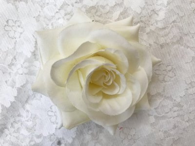Rosa Média Branca Sem Arame