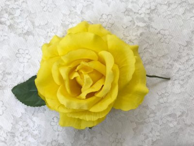 Rosa Grande Amarela