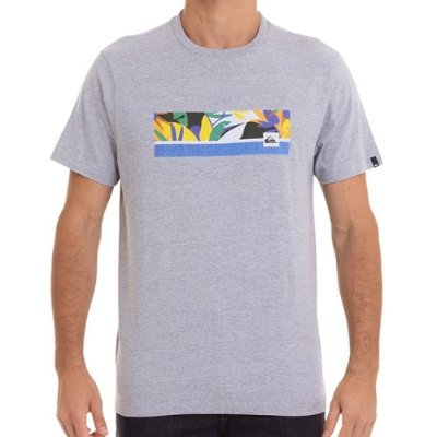 Camiseta Quiksilver Jam It Masculina Cinza