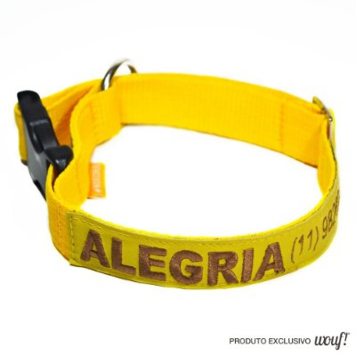 Coleira de Identificação para Cachorro - Amarela