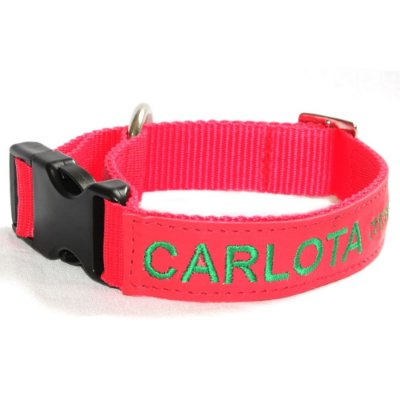 Coleira de Identificação para Cachorro - Vermelha e Verde