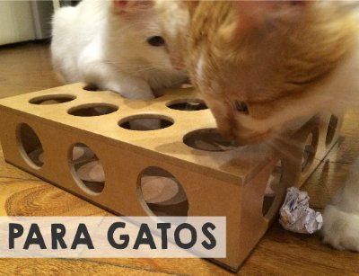 Mini Banner Gatos Toy Box