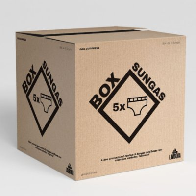 Box Surpresa LaVíbora - 5 Sungas