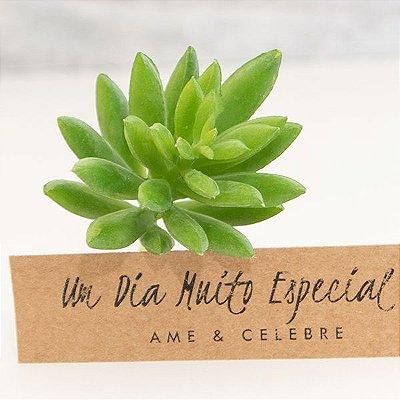 Mini Suculenta Artificial 9cm