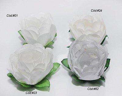 Rosa Bela Branca
