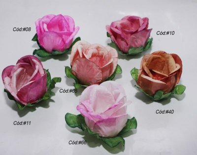 Rosa Rainha Tons Rosa