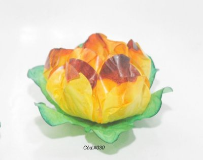 Tulipa Tons Amarelos