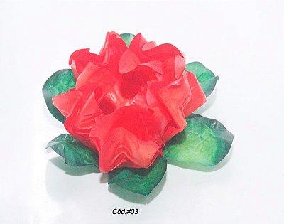 Tulipa Tons Vermelho