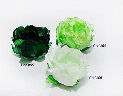 Rosa bela Tons Verdes