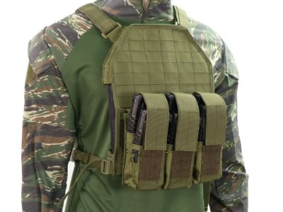 COLETE CLASSIC ARMS - VEST GREEN