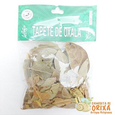 Erva Tapete de Oxalá