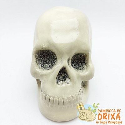 Cranio Caveira 15cm