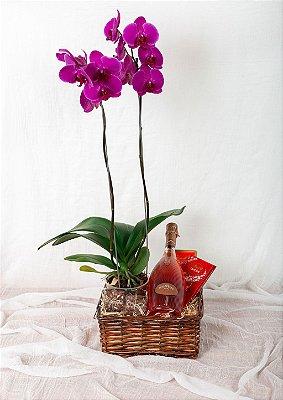 Cesta com Espumante e Orquídea