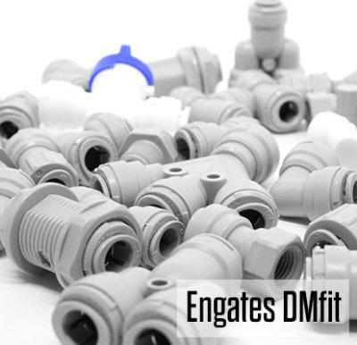 Conexões DMfit