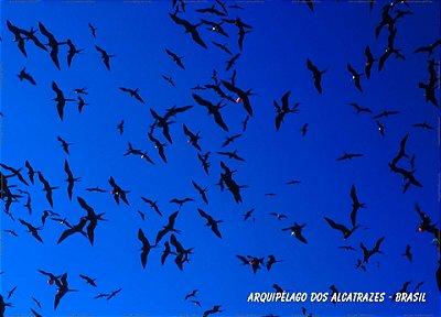 Arquipélago dos Alcatrazes 100x140 cm