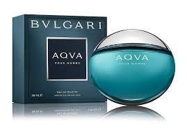 Perfume Bvlgari Aqva Pour Homme Masculino Eau de Toilette 100ml