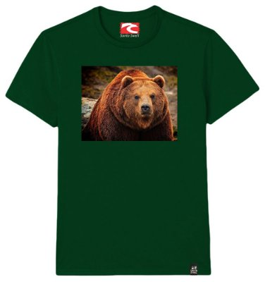 Camiseta Santo Swell Bear in the Forest Estampada Manga Curta 3 Cores