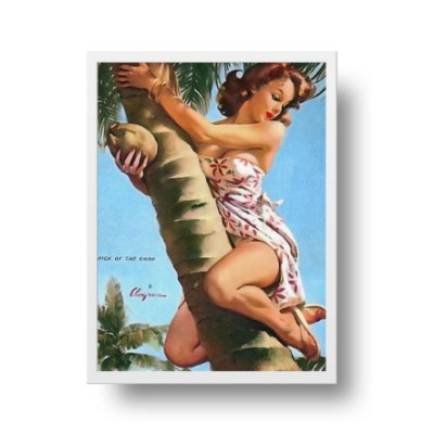 Poster Pin Up - Pick of the crop