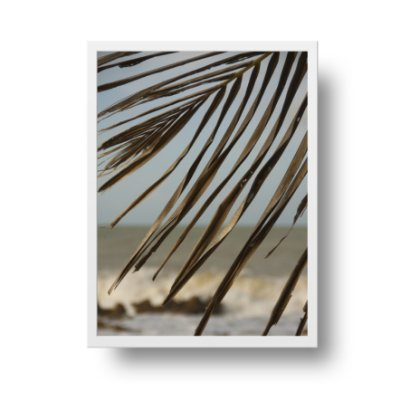 Quadro Poster Fotografia Folhas e Mar - Pipa - Rio Grande do Norte