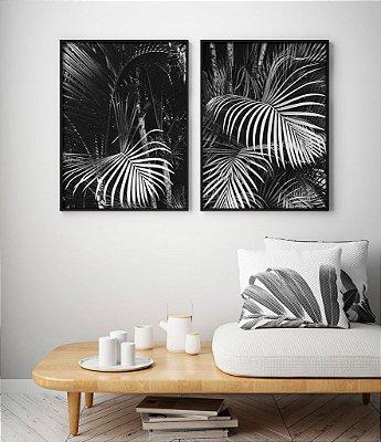 Conjunto 2 Quadros Decorativos - Fotografia Natureza, Preto e Branco, Folhas Palmeira