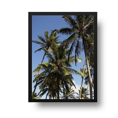 Quadro Poster Decorativo Foto Paisagem Natureza Coqueiros - Praia, Pipa, RN