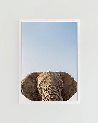Quadro Decorativo Poster Fotografia Elefante - Animal, África, Minimalista