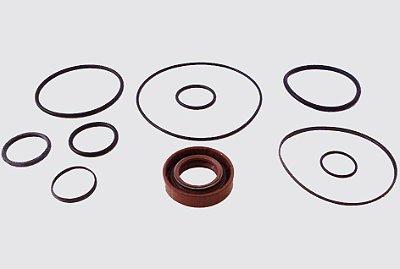 Reparo Caixa Direção Hidráulica Turbo Daily / 150 e 20 N/T e 160 e 23 N/T  FN4