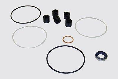 Reparo Caixa Direção Hidráulica LT111 / T112 - B - L - LS