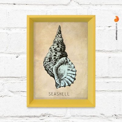 "Quadro Decorativo ""Seashell"""