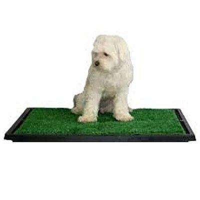 Tapete Higiênico Modelo SEM GAVETA Para Cachorros Pipi Dog Em Grama Material Sintético - Sanitário Para Cães